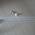 """Ballon gonflable 12"""" (30cm) personnalisable image"""